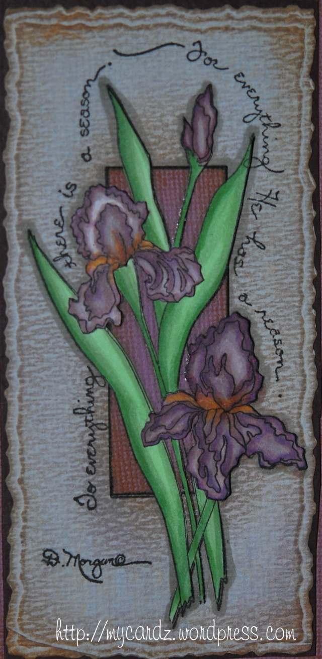 Distressed Irises