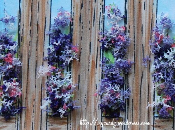 Fuchsia Flower Soft