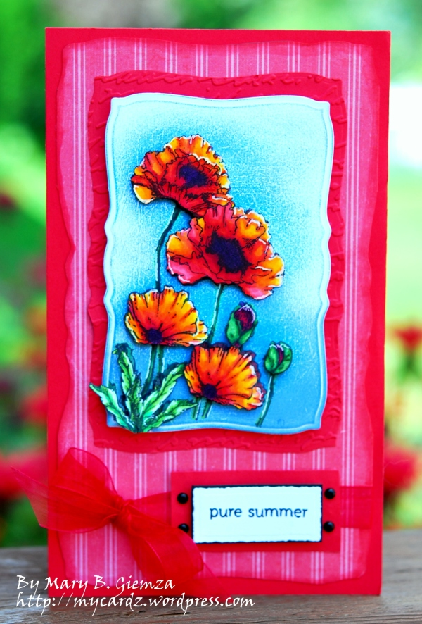 Poppy Patch